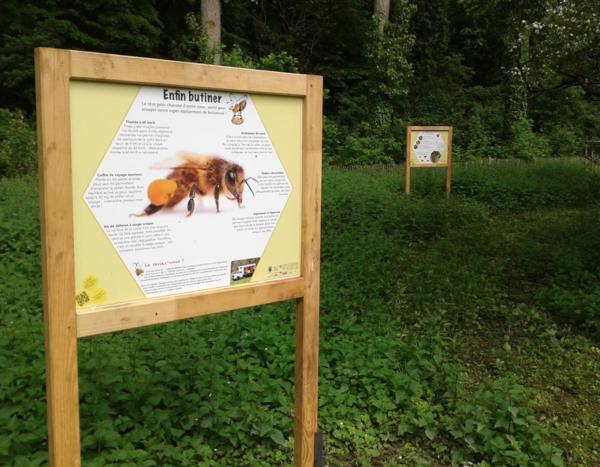 lexpoabeilles_expo-abeilles.png