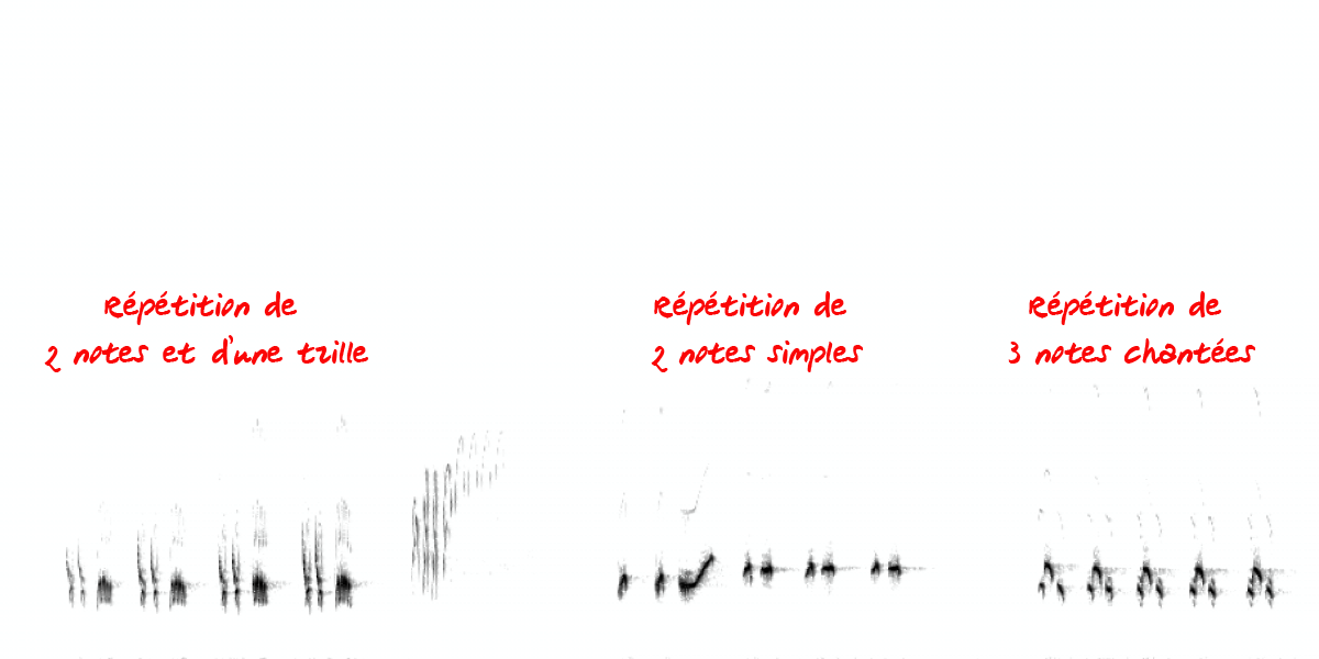 image spectrogramgrivemusi.png (0.1MB)