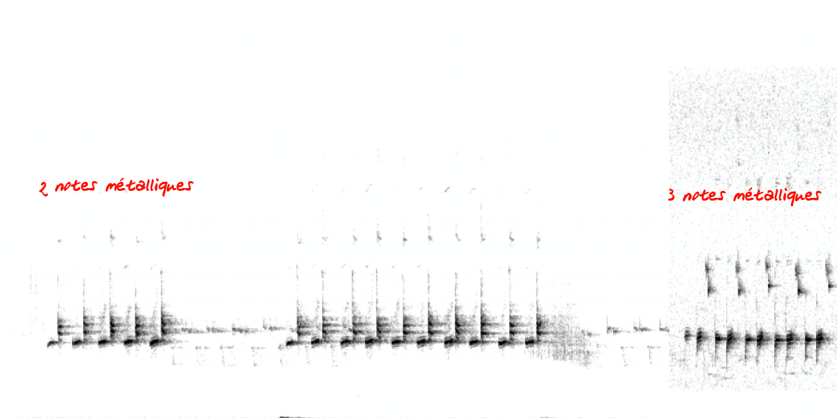 image spectrogramcharbook.png (0.1MB)