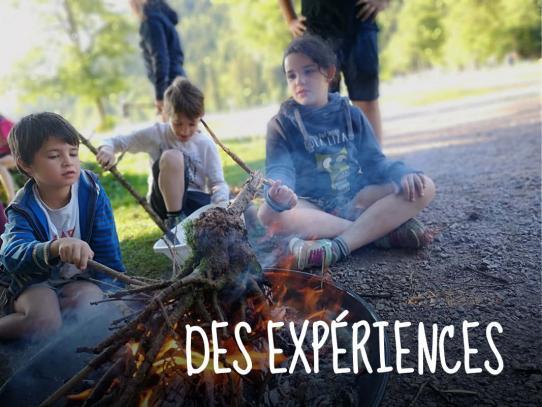 Des expériences