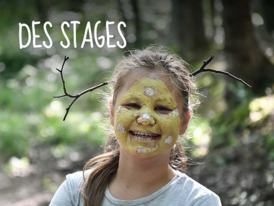 Des stages